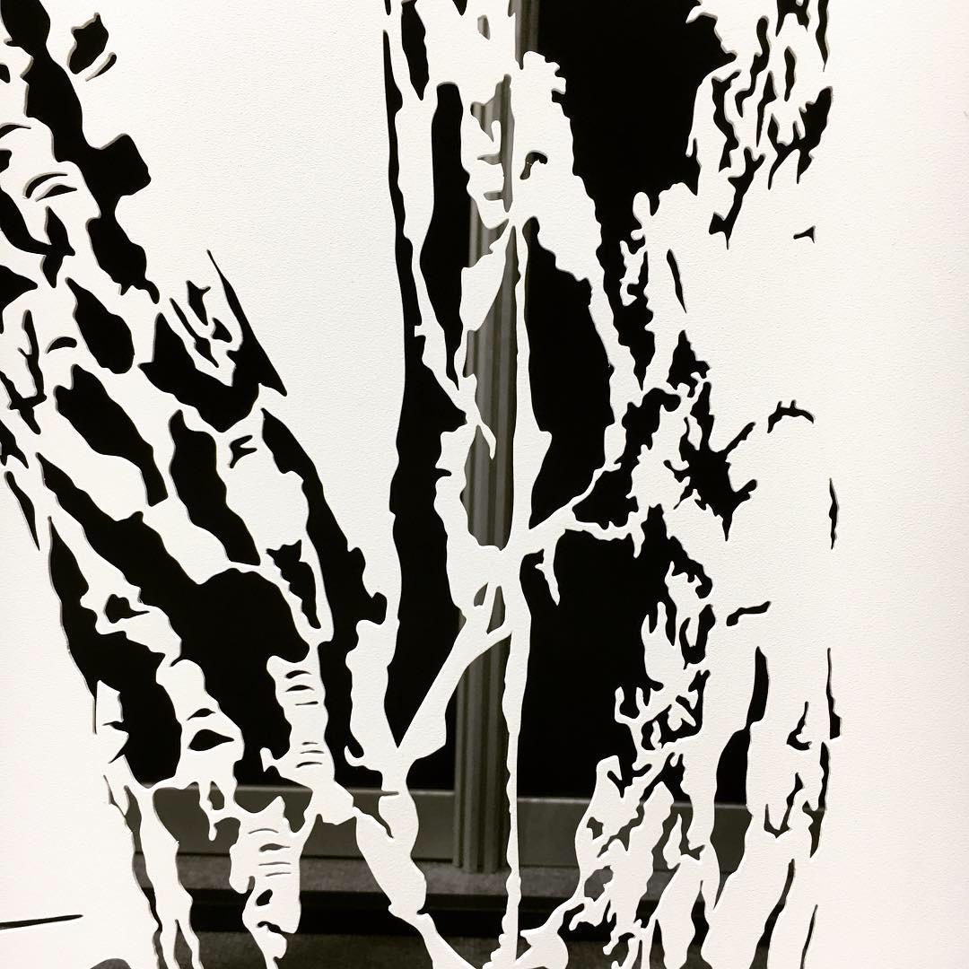 Obraz metalowy na ścianę brzozy_4