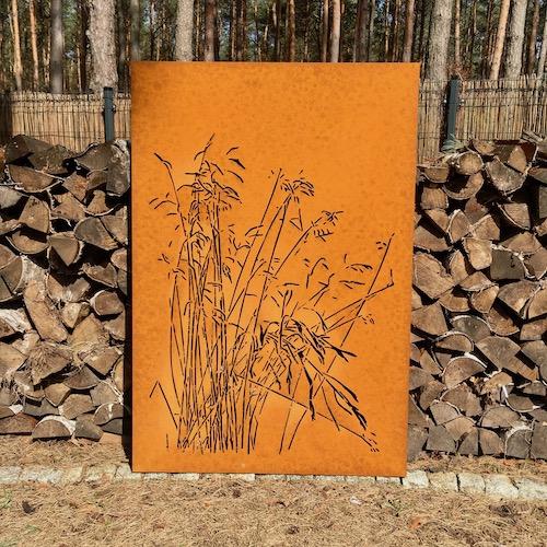 Trawy Kostrzewa